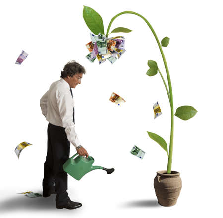 Businessman and a plant of money photo