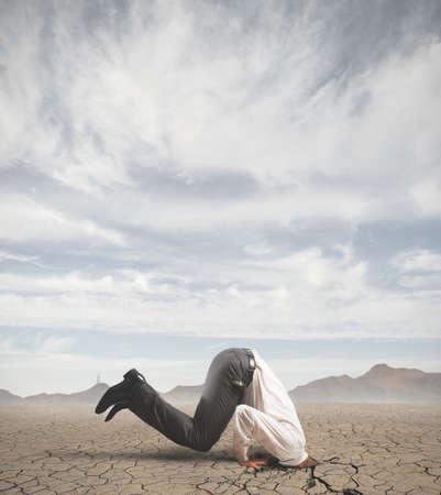avestruz: Concepto de hombre de negocios asustado como un avestruz