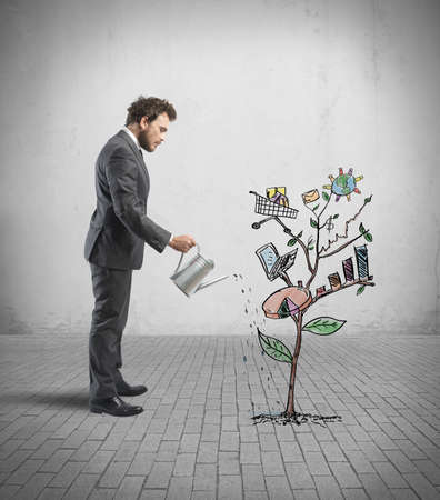 verhogen: Concept van de groeiende bedrijf met schets van een plant met zakelijke symbool Stockfoto