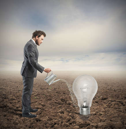 Businessman cultivates an idea in a field photo