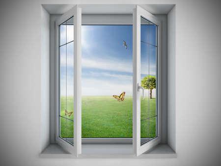 cảnh quan: Cửa sổ mở ra với một lĩnh vực ngoài trời xanh