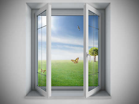 indoors: Opened window with a green field outdoor