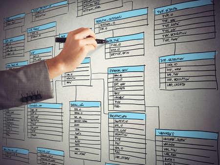 Programmeur trekt en organiseert een nieuwe database