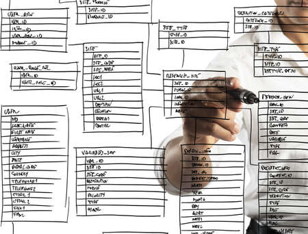 programmer: Programmer designs and organizes a new database