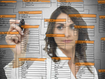 Businesswoman works on the database software development Stock Photo