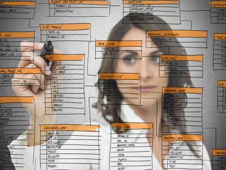zeichnen: Geschäftsfrau arbeitet an der Datenbank der Software-Entwicklung