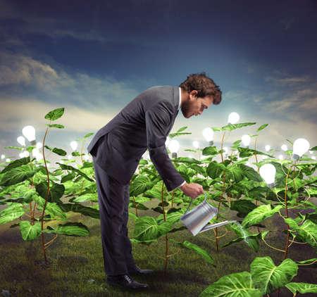 Businessman take cares and nurtures new ideas Stock Photo