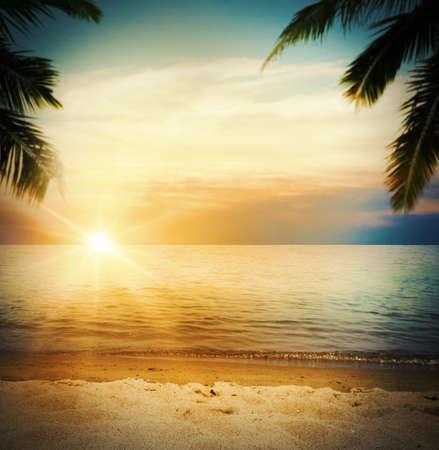 tropisch: Hintergrund von einem tropischen Strand bei Sonnenuntergang