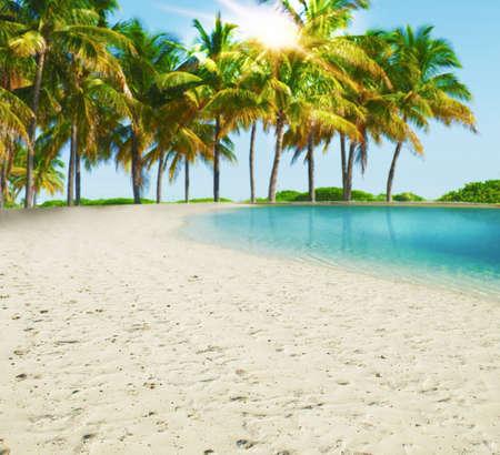 Пейзаж: Фон тропический пляж с пальмами Фото со стока