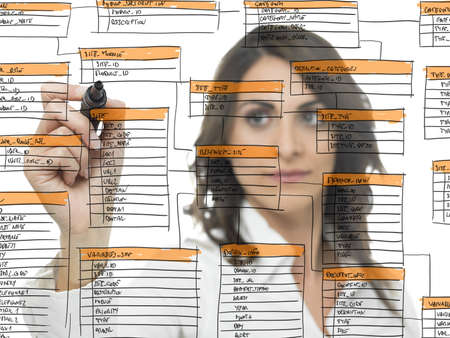 organization development: Businesswoman works on the database software development Stock Photo