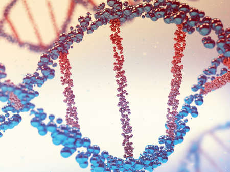 macro: 3D rendering of a macro human dna Stock Photo