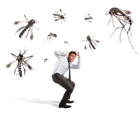 겁 먹은 겁 먹은 남자를 공격하는 거대한 모기