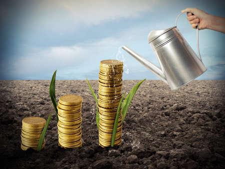 banco dinero: El hombre de negocios de riego de monedas de dinero como si fueran plantas Foto de archivo