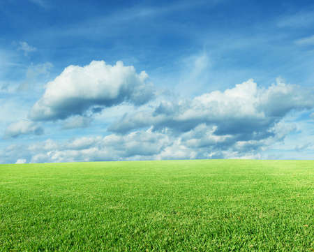 Landscape with green grass and blue sky Stock Photo