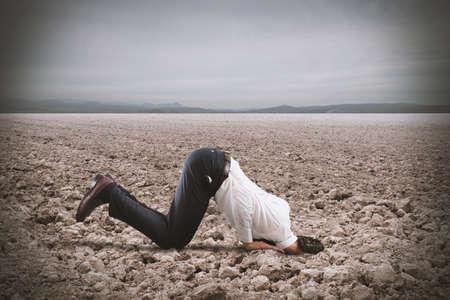 derrumbe: hombre de negocios asustado esconde la cabeza bajo la tierra como el avestruz. El miedo al concepto de crisis