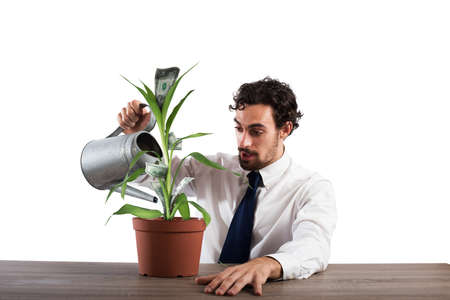 Businessman watering a plant that produces money Stockfoto