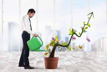 Businessman arrosage des pièces d'argent comme si elles étaient des plantes Banque d'images - 66484689