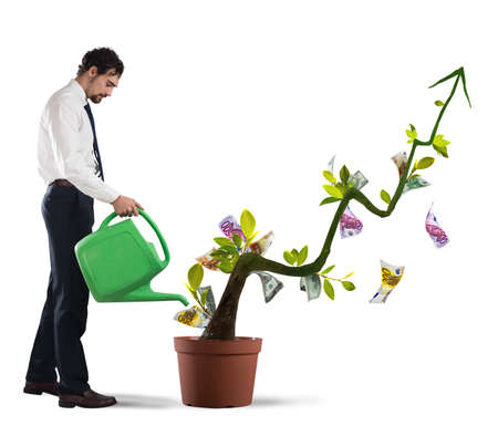 earn money: Businessman watering money coins as if they were plants