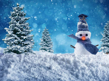 Cute Snowman with hat and scarf wishes merry christmas on the snow Stock Photo