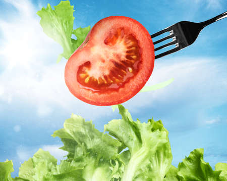 uncooked: Mixed salad with a fork