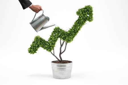 ビジネスマンは、矢のような育つ植物に水をまきます。3 D レンダリング