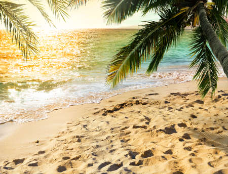 sunbath: Tropical beach with coconut tree with sunray reflected on the sea on sunset