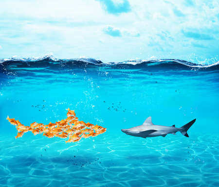 Big shark made of goldfishes. Concept of unity is strenght,teamwork and partnership Standard-Bild