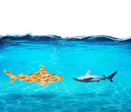 Big shark made of goldfishes. Concept of unity is strenght,teamwork and partnership Stockfoto