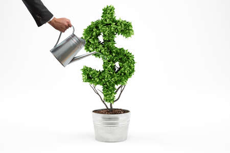 Potted plant with dollar shape. 3D Rendering Standard-Bild