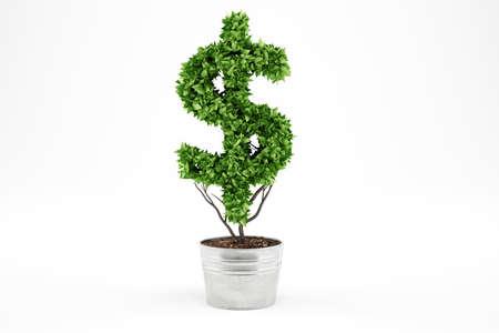 ドル形の観葉植物です。3 D レンダリング 写真素材