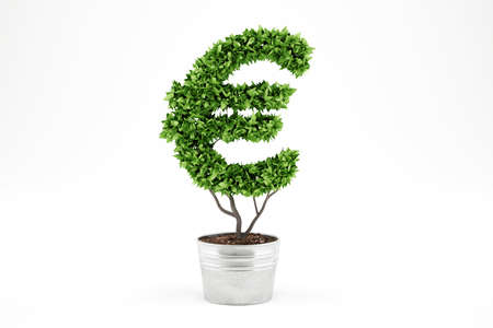 Potted plant with eur shape. 3D Rendering