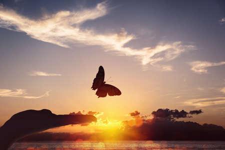Butterfly takes flight from a human hand Standard-Bild