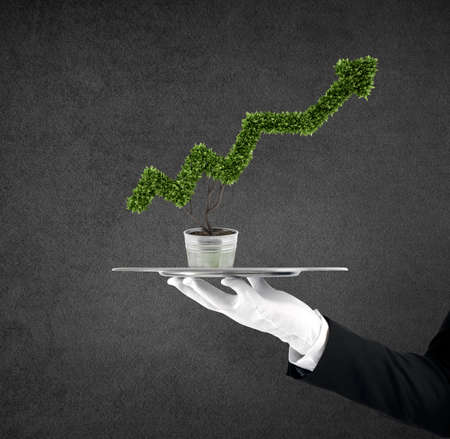 Waiter that holds a tray with a plant shaped as statistic arrow. Concept business success Stock Photo