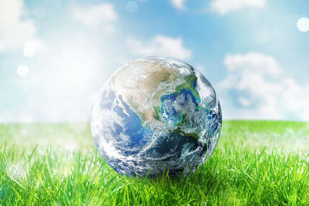 Earth globe in a green pristine field. Stock Photo