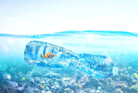 Fish trapped inside a bottle. Problem of plastic pollution under the sea concept.