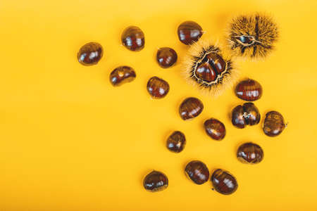 Stylish composition of chestnut on yellow background 版權商用圖片 - 132771446