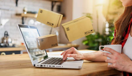 Woman does shopping through e-commerce online shop. Concept of fast delivery Standard-Bild - 161951537
