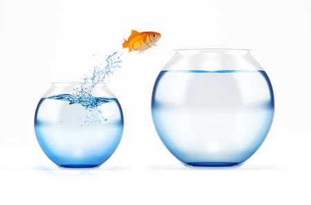 Red fish jumps from a cruet to a bigger one. concept of escape from crowd