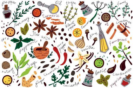 Spices doodle set 矢量图像