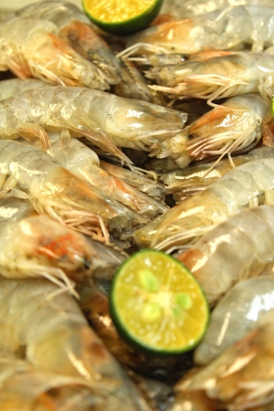 Asian dishes - fresh prawn and calamansi lime for steamboat set in shallow depth of field Stock Photo - 14416795