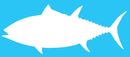 bluefin tuna: Vector illustration of a Blue Fin Tuna