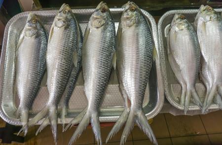 Salted Terubok fish (Tenualosa toli) at Satok Wet Market, Kuching, Sarawak Borneo Island Stock Photo