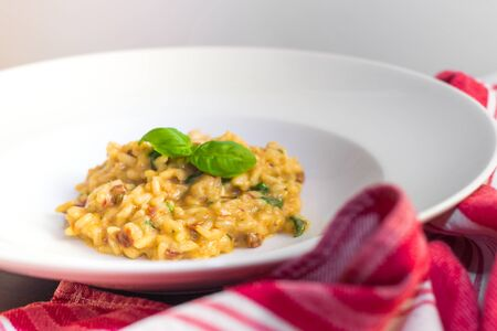 arugola: Risotto with dried tomatoes, arugola and basil on white deep plate. Stock Photo