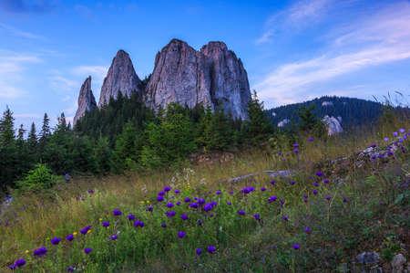 Rocky towers and flowers Standard-Bild