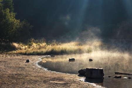 steamy: Steamy lake and dark forest in summer