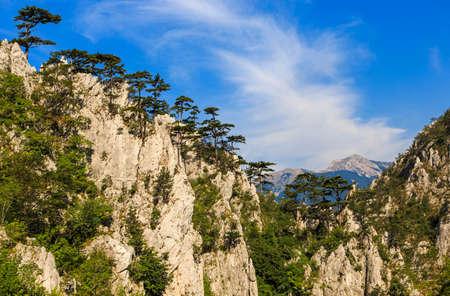 Limestone Tasnei gorge protected area in Romania