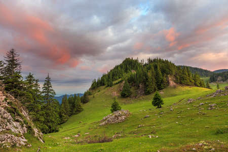 Sunrise over summer green mountain meadow red clouds Stock Photo