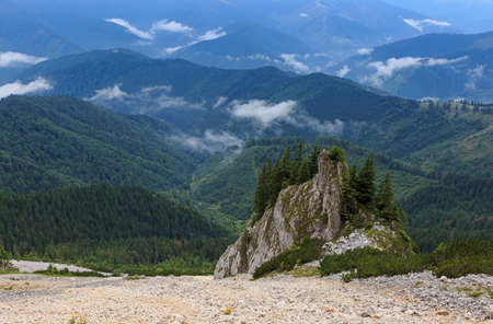 Mountain cliff peak over the misty forest
