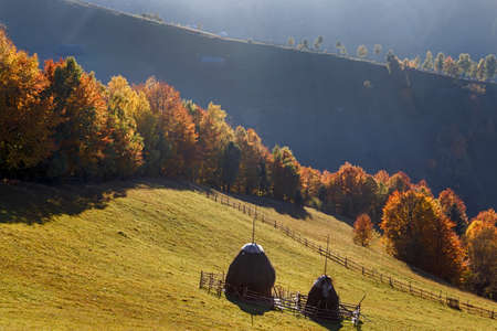 haymaking: Autumn landscape with hay in the meadow in the Carpathian mountain village. Romania.