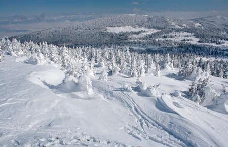 Winter snow in mountains landscape transylvanian scenery Standard-Bild